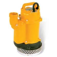 "SUBMERSIBLE 2"" PUMP 110 V."